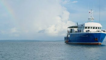 Santana Laut Mentawai New