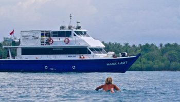 Naga Laut Mentawai Blue Surf Travel Indonesia