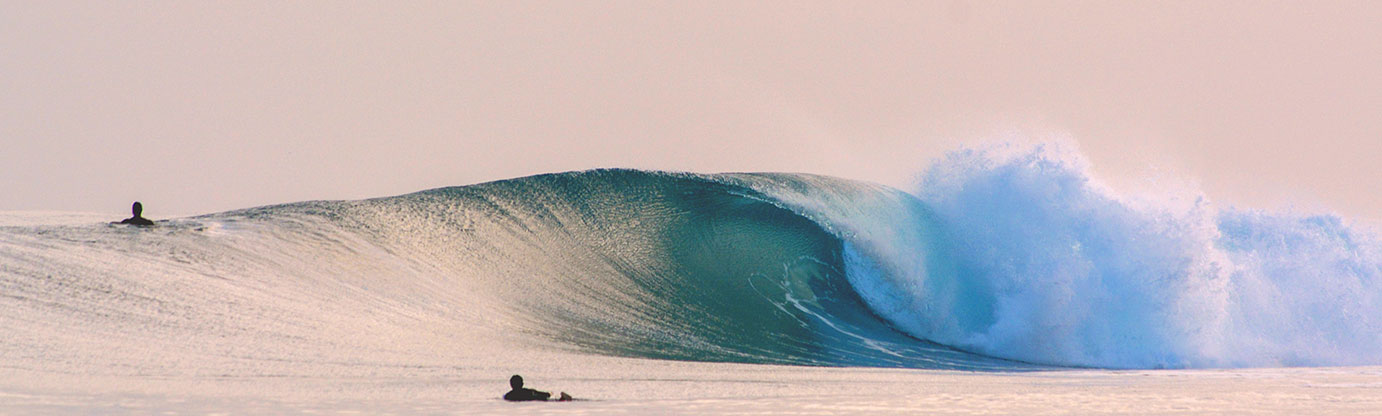 wave of the day surf travel