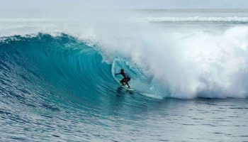 d'bora surf charter feature